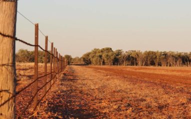 Future Drought Fund's Networks to Build Drought Resilience grants program – now open